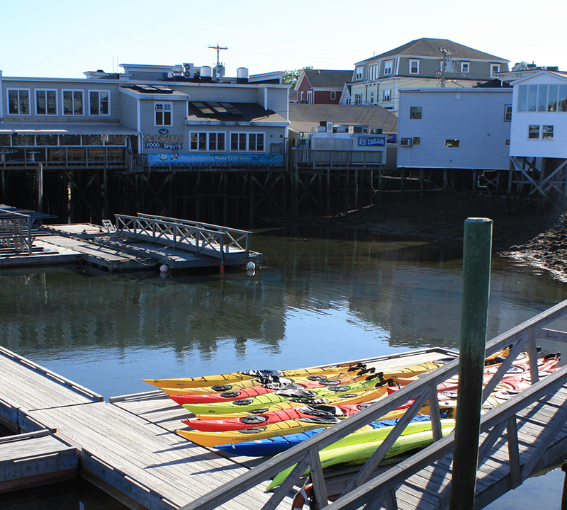 kayaks in harbor